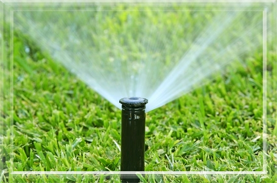 Sprinkler and Irrigation System start up in Grand Rapids MI