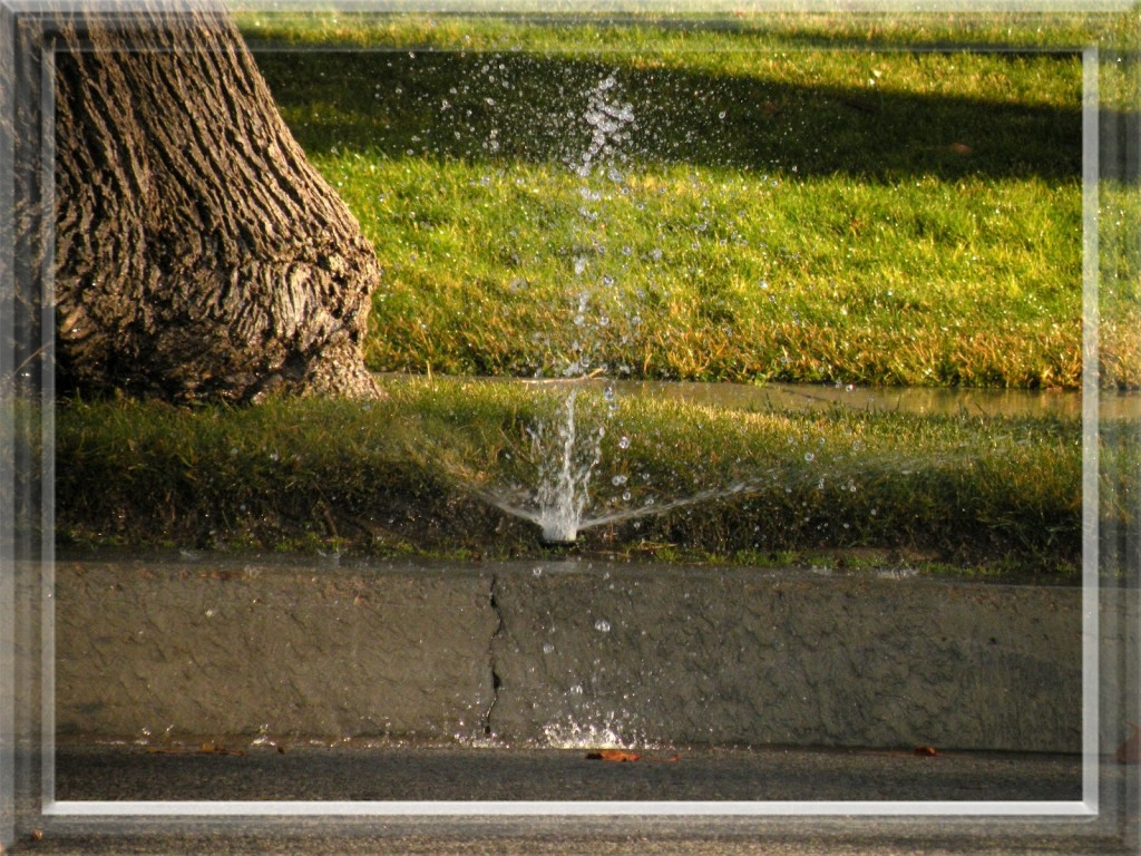 Sprinkler System Repair & Maintenance in Grand Rapids and West Michigan